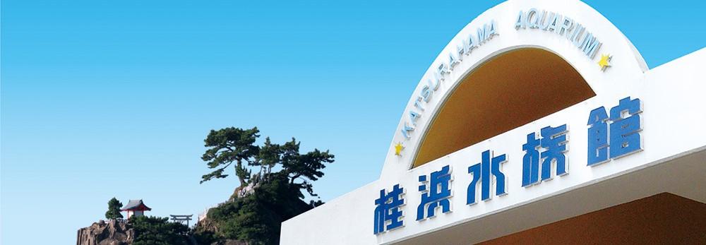 桂浜水族館スタッフブログ